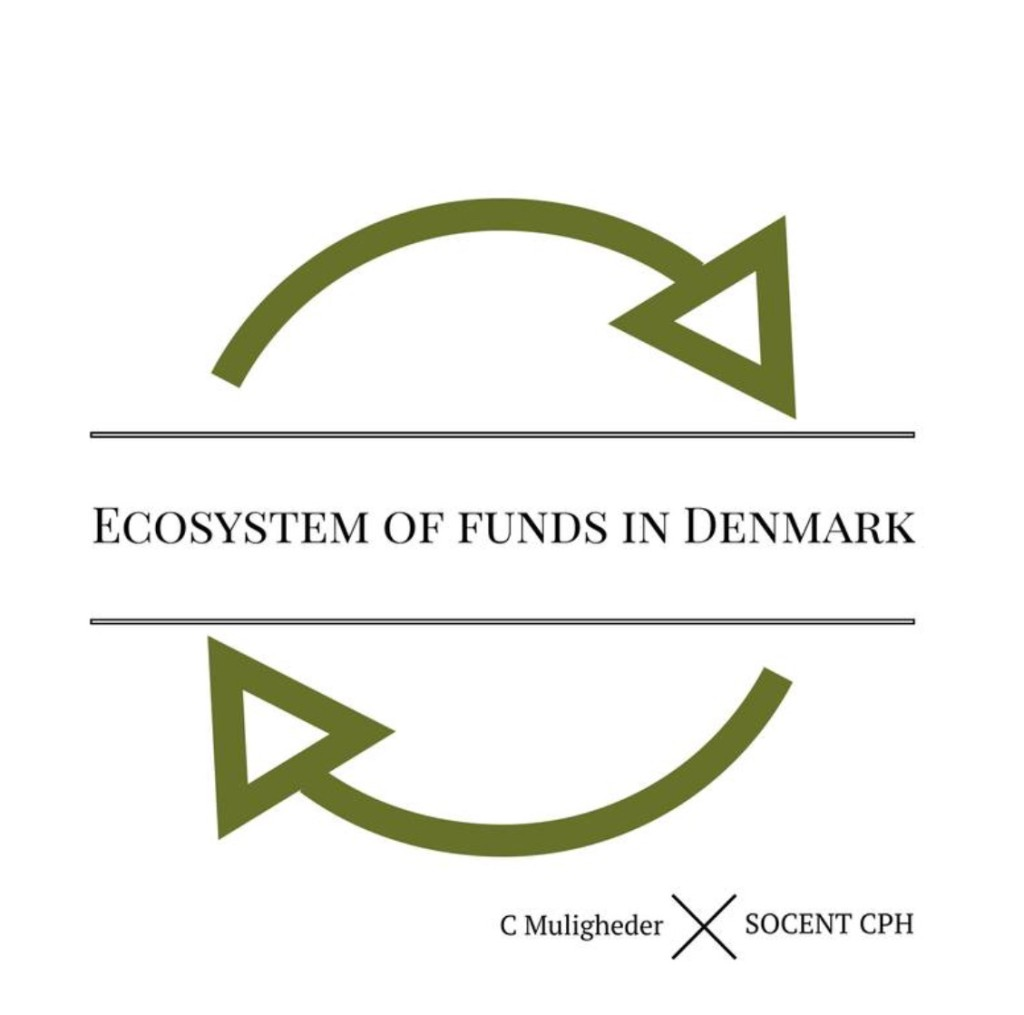 ECOSYSTEM OF FUNDS IN DENMARK . A  Workshop done together with SOCHP